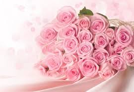 ments on pink pastel roses for