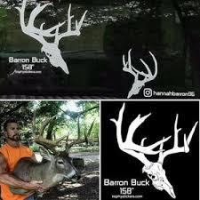 Whitetail Mule Deer Blacktail And Other Decals Trophystickers Com