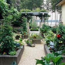 grow a vegetable garden in raised beds