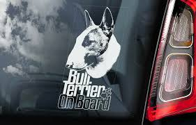 Bull Terrier Car Sticker Brindle Bully Dog Window Sign Decal Gift Pet V06 Ebay