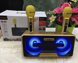 Loa công suất lớn, Loa thùng hát karaoke bluetooth cầm tay SD-301 âm thanh  siêu chuẩn - Tặng kèm 2 mic không dây xịn - BẢO HÀNH 1 ĐỔI 1 giá chỉ  699.000₫
