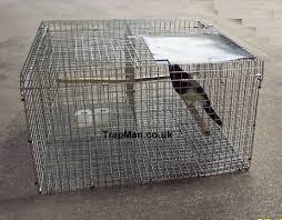 ln traps side entry ln traps
