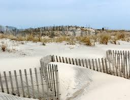 Fees To Install Dune Fencing Discouraging To Some Homeowners 27 East