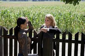 Two Businesswoman Talking Across The Fence Photo Image Picture Free Download 501447857 Lovepik Com