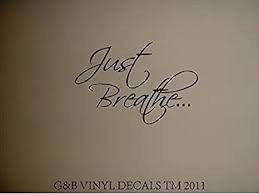 Just Breathe Vinyl Wall Decal Home Decor Wall Decor Stickers Amazon Com