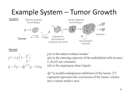 Example System – Tumor Growth Tumor p(t) is the tumor volume in mm 3 q(t)  is the carrying capacity of the endothelial cells in mm 3, α,B,d,G are  constants. - ppt download