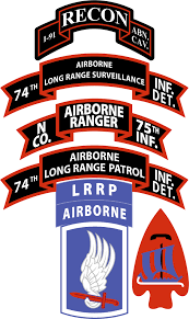 N Company Ranger 75th Infantry Airborne 173rd Airborne Brigade Decal
