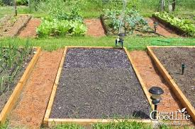 organic mulch helps your vegetable garden