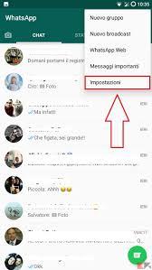 Profili WhatsApp senza foto: perché sono scomparse? - ChimeraRevo