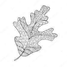 Blad Doodle Vectorillustratie Stockvector C Ledelena 129772366