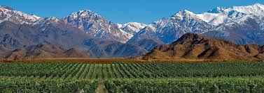 Mendoza region Wine Region | Gold Medal Wine Club
