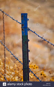 Barbed Wire Fence Post Stock Photo Alamy