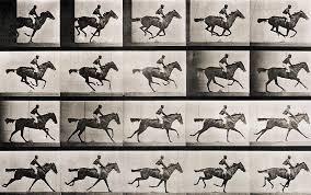 Jockey on a galloping horse Photograph by Eadweard Muybridge