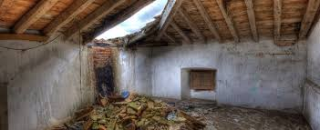 signs your house may have toxic mold