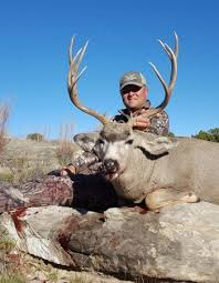 New Mexico Hunting Outfitters Private Ranch Elk Deer Antelope Turkey