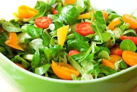 Die Salat-Saison beginnt am 1. April - Die Zieglerschen