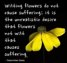 wilting flowers do not cause suffering thich nhat hanh
