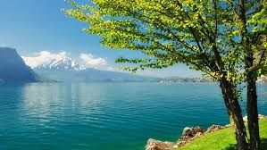 beautiful natural scenery 1080p 2k 4k