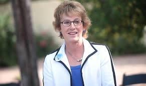 Republican Wendy Rogers announces run for Rep. Tom O'Halleran's seat
