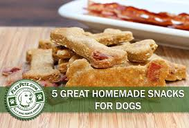 5 great homemade snacks for dogs