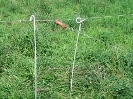 Livestock Fencing On Grazing Management Systems Eorganic