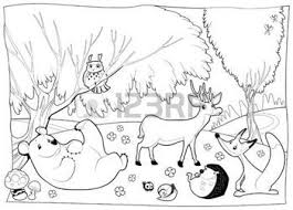 Dieren In Het Bos 2c Zwart En Wit Stock Illustratie Dieren
