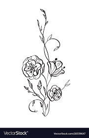hand drawn wild rose flowers drawing