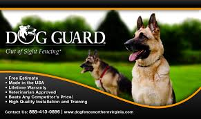 Invisible Dog Fence In Northern Virginia Northern Virginia Dog Training Blog