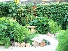 vegetable garden designs delectable