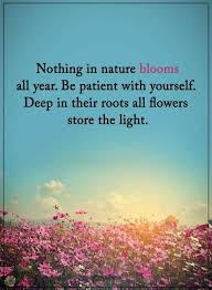 quotes nothing in nature blooms all year be patient yourself