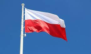 Ministerstwo Kultury ustali nowe barwy flagi Polski? - Polityka ...