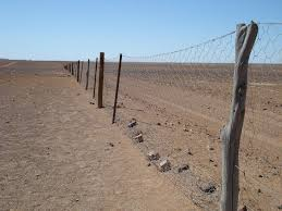 The Rabbit Proof Fence Of Australia Amusing Planet