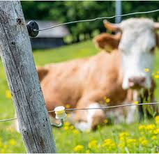Electric Fencing Tips Southern States Co Op