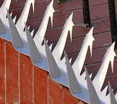 Wall Spikes For Sale Security Spikes Anti Climb Fence Spikes