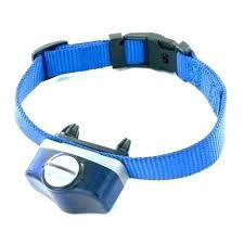 Stubborn Dog Collar Ebay Petsafe Replacement Parts Mulleez Mobi