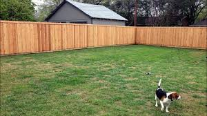 Our Adventure Building A Western Red Cedar Privacy Fence In Dallas Tx Youtube