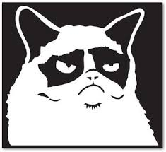 Amazon Com Grumpy Cat Face Square Blk Car Sticker Decal Phone Small 3 Kitchen Dining