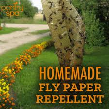 diy flypaper homemade fly repellent