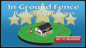Diy Dog Fence Reviews