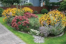 environment friendly rain gardens