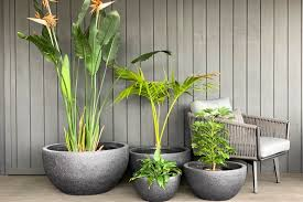 well bowl me over outdoor bowl pots