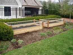 Three Raised Garden Beds With Rabbit Railing 3x8x2