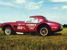 Image result for costilow larson cobra