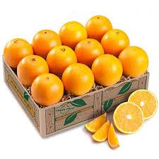 florida navels oranges