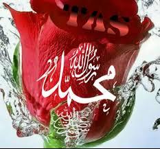 صورة ورد مكتوب اسم محمد عليه الصلاة والسلام Tas أهلا بيكم في