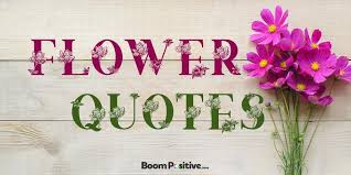 flower quotes scented quotations about flowers boom positive