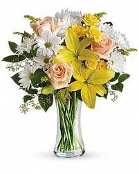 daisies and sunbeams in decorah ia