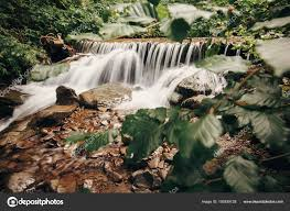 beautiful waterfall river forest