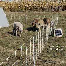 Premier Pig Quikfence Electric Netting White 6 30 12 3 Https Www Amazon Com Dp B00w5ts93o Ref Cm Sw R Pi Dp X Xricabrpt68 Pig Fence Hog Pig Pig Farming