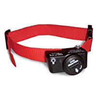 Petsafe Dog Collar Batteries